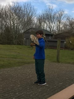 Nick's bird experience at The Raptor Foundation.