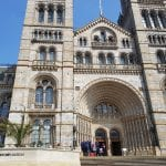 A Day At The Natural History Museum In London