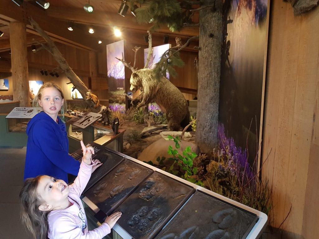 Jackson Hole Visitor Center