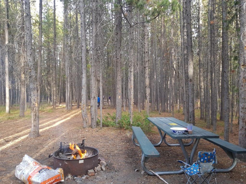 RV Campsite at Colter Bay RV campground