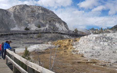 Mammoth Hot Springs at Yellowstone National Park