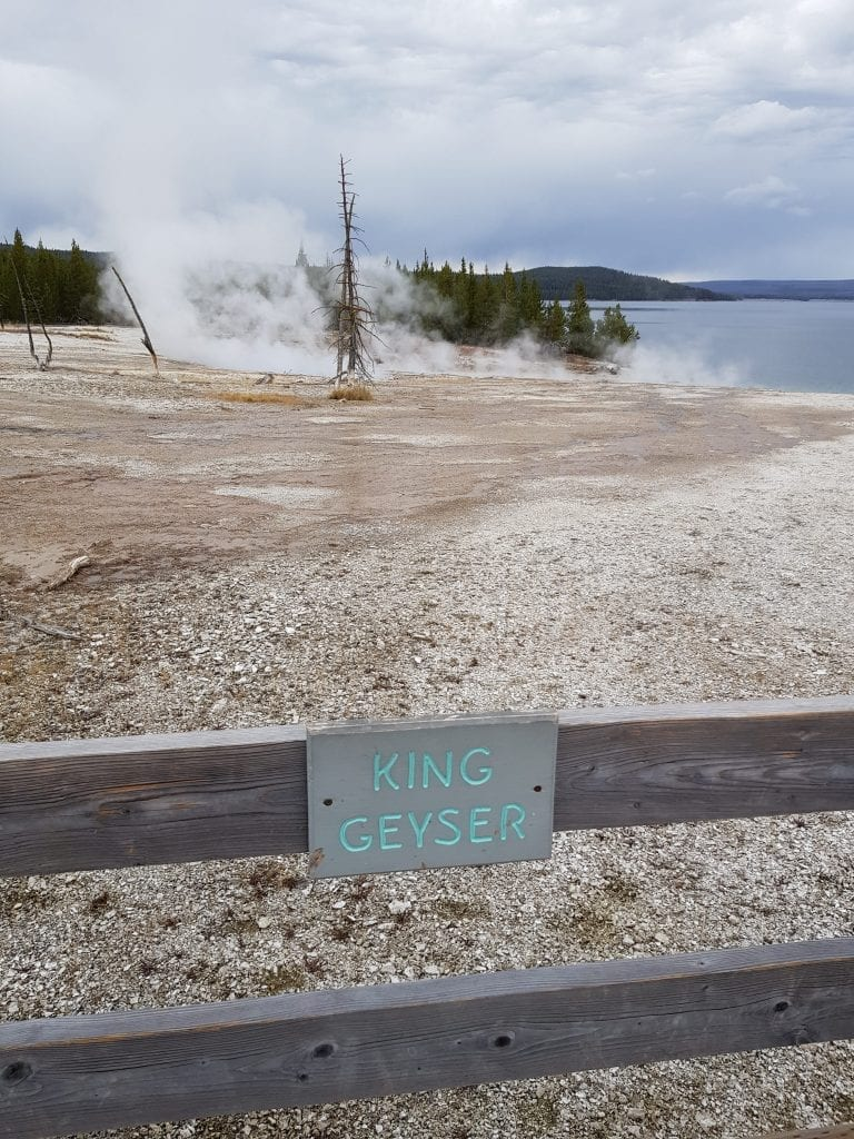 King Geyser, Yellowstone