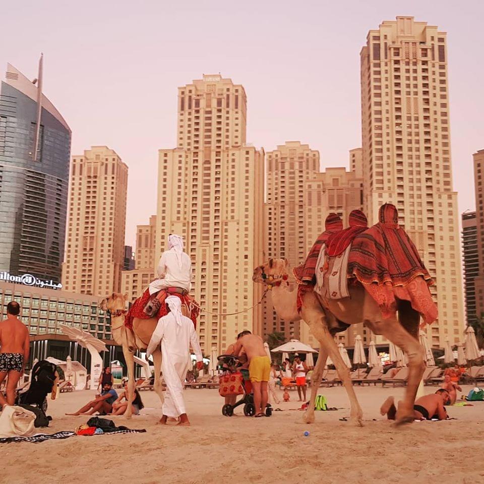 One week in Dubai with kids familytravelexplore